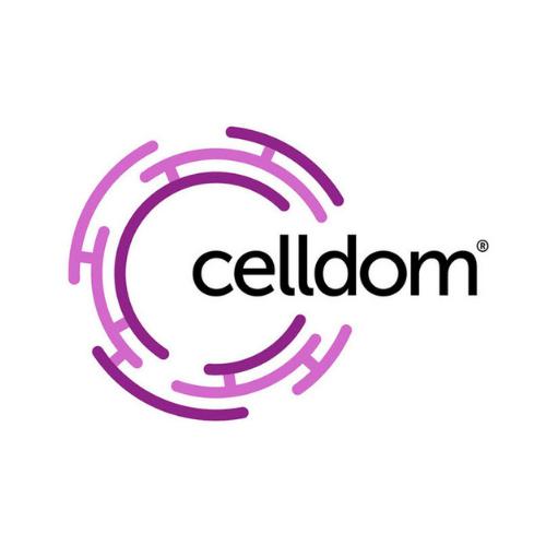 Celldom Inc.