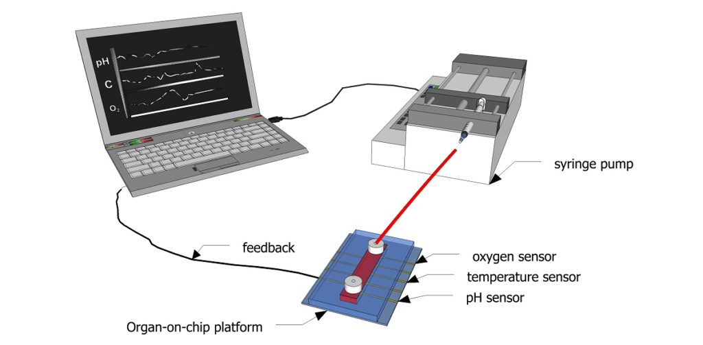Schematic showing how sensors can be used to continuously monitor biochemical parameters inside a microfluidic channel.