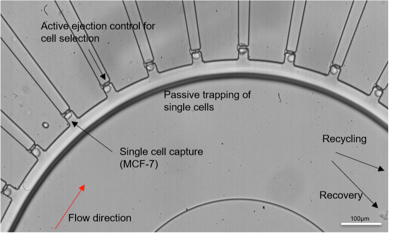 Figure 1. A microfluidic single cell isolation device. Image adapted and reproduced with permission from Yeo et al., Sci. Rep. 6, 22076 (2016). Copyright Nature Publishing Group.