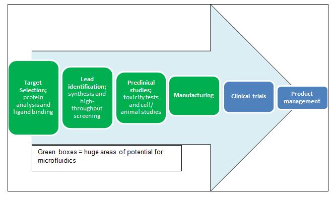 Representation of the drug discovery & development pipeline.Credit: Isobel Steer