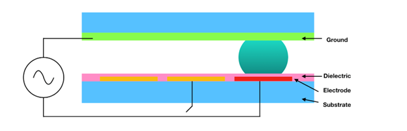 Schematic cross-section of a typical EWOD device showing all layers.
