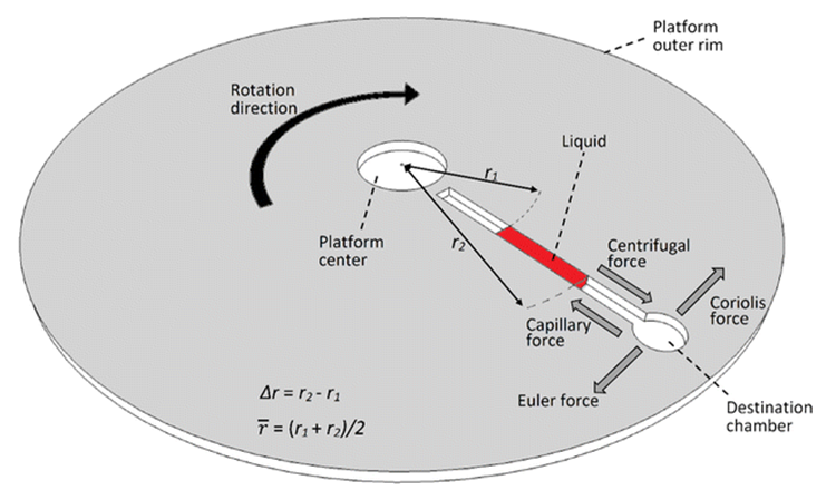Schematic highlighting various body forces applicable to a radial column of water inside the channel of a CD. Notice the radially outward-acting centrifugal force which is crucial to moving the fluid towards the edge of the disc.