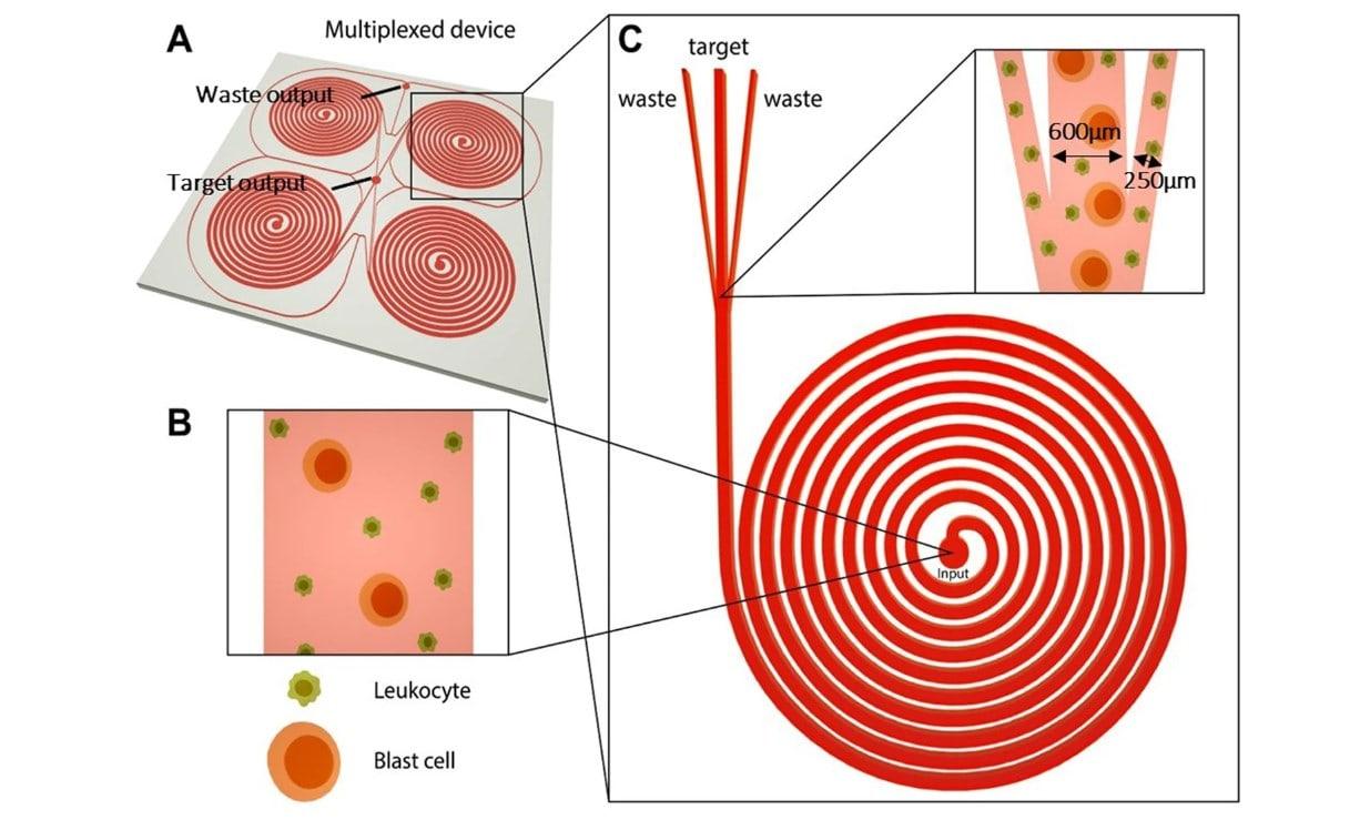 portable-blast-cell-biochip