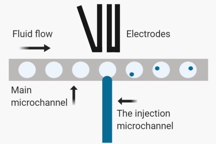 Microfluidic droplet injection